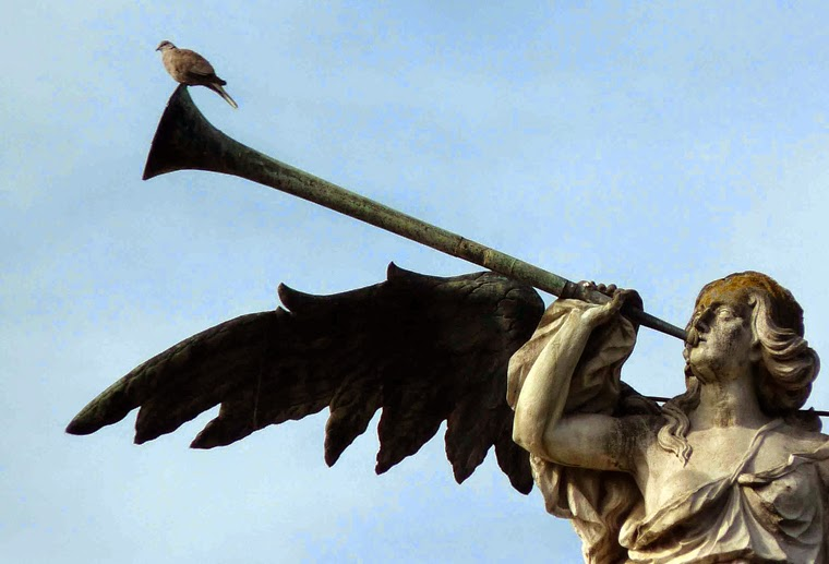 Angel Fama Sevilla