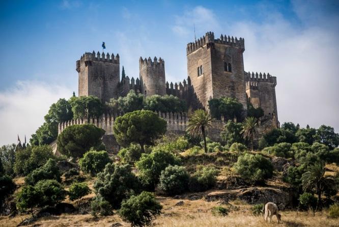 castillo_almodovar