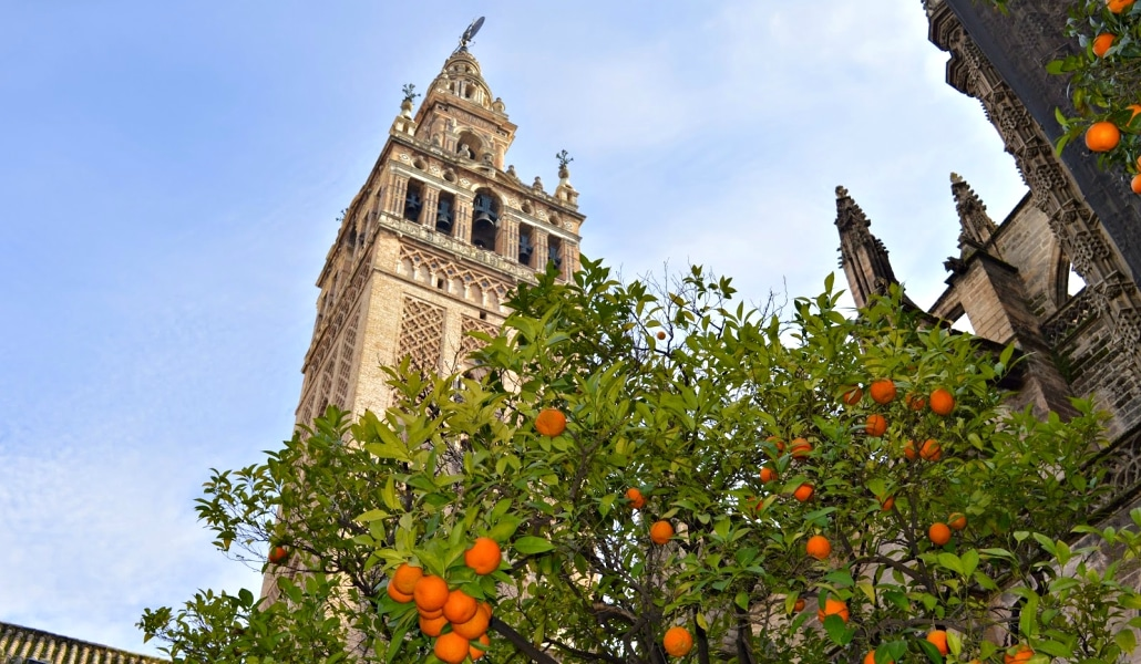 sevilla-ciudad-naranjos