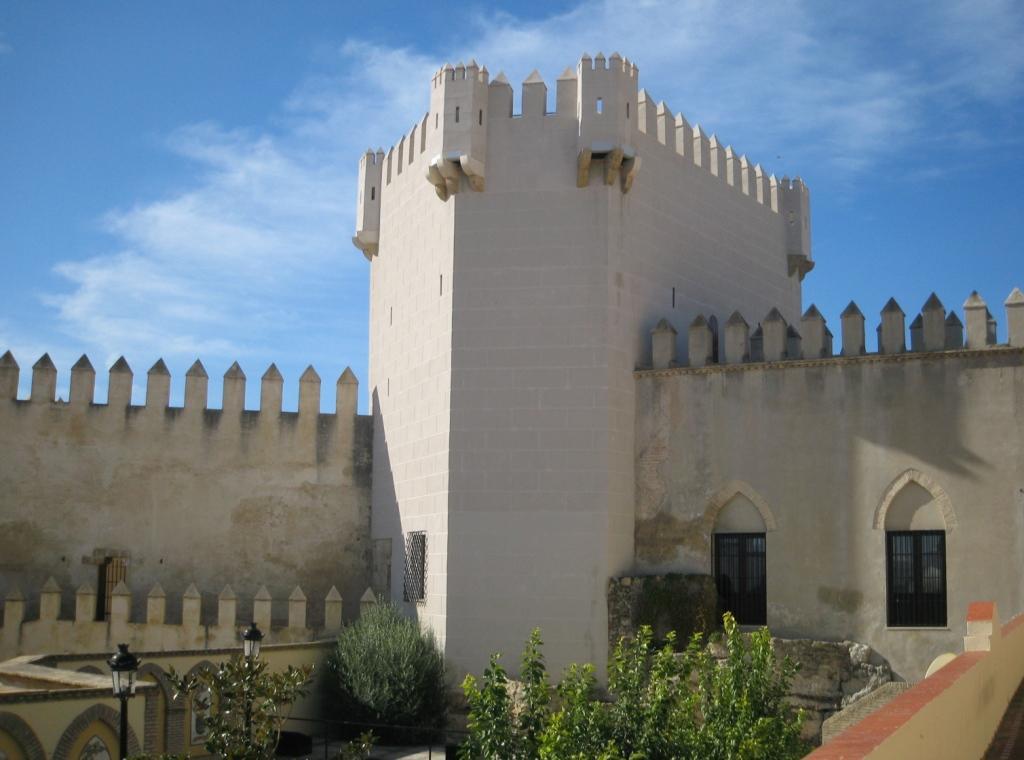 castillo_molares