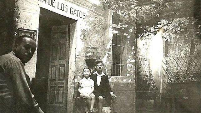 Becquer-Sevilla-BIC-Venta-Gatos